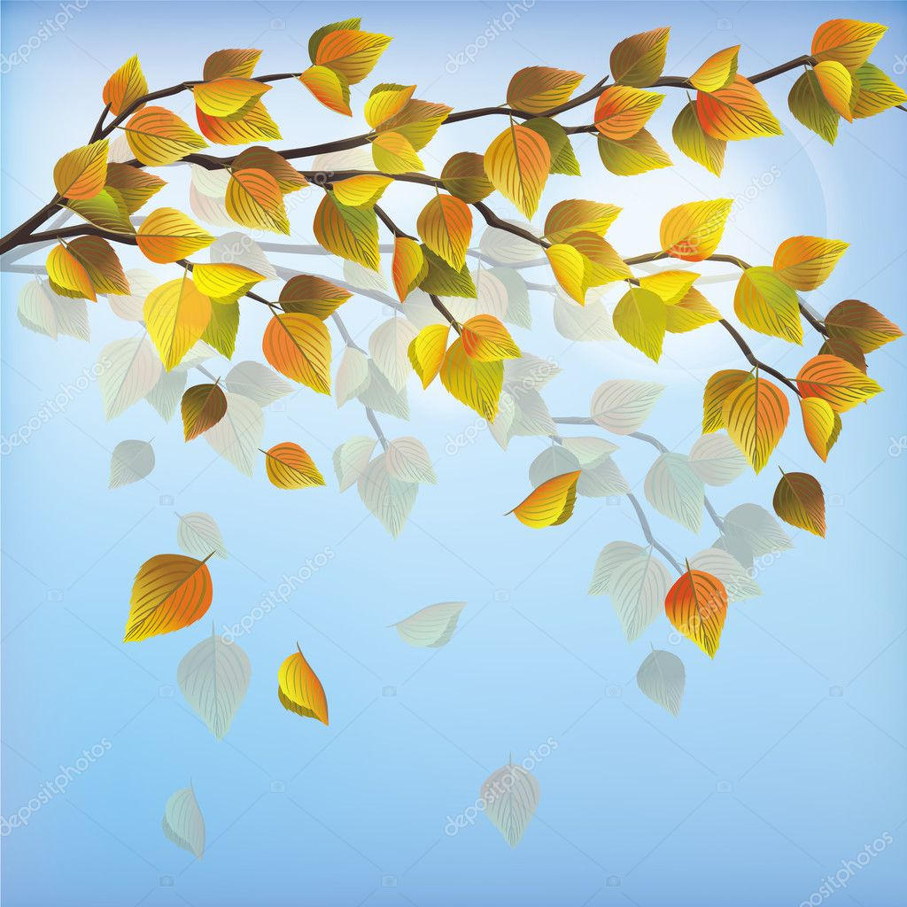 Autumn tree with flying leaves, beautiful light nature background, place for text. Vector illustration. — Stock Vector #11412642