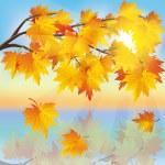Autumn tree maple on background of sunset — Stock Vector #11473719
