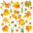Set of autumn leaves and grass isolated over white - Stock Vector
