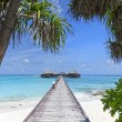 Bridge over blue ocean on tropical island — Stock Photo