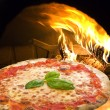 PizzMargherita — Stock Photo #10766012