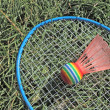 Stock Photo: Bad...minton corner (4)