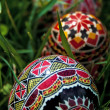Painted Easter eggs 9 — Stock fotografie