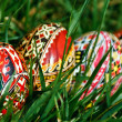 Painted Easter eggs 17 - Stock Photo