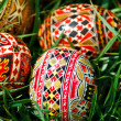 Painted Easter eggs 23 - Stock Photo