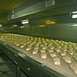 Stock Photo: Bread production 2
