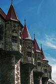 Dracula's Castle.Details 1 — Stock Photo