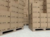 Cardboard boxes on wooden pallets, inside the warehouse — Stock Photo