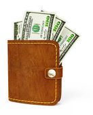 Cash wallet — Stock Photo