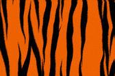 Tiger fur — ストック写真