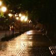Night park - Foto Stock
