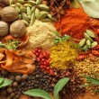 Spices and herbs — Stock Photo #10805770