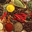 Spices and herbs — Stock Photo #11745485