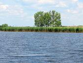 View at lake — Stockfoto