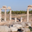 Ancient ruins Hierapolis. Turkey — Stock Photo #10747601
