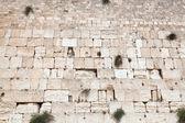 İsrail. kudüs ağlama duvarı — Stok fotoğraf