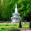 Stock Photo: Fountains in Petergof park. RomFountains