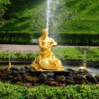 Stock Photo: Fountains in Petergof park.