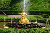 фонтанов в петергофе парке. — Стоковое фото