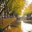 Reflections and fallen leaves in canal water — Stock Photo