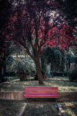 Red bench in Venice park — Stock Photo