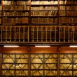 Book shelves in library — Stock Photo #11741836