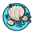 Shell clip art - Foto Stock