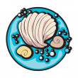 Shell clip art - Foto de Stock