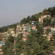 McLeod Ganj City of North India — Stock Photo #11721883