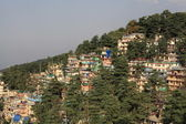 McLeod Ganj City of North India — Zdjęcie stockowe