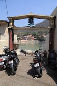 Cow on the waterfront in the city of Rishikesh — Foto de Stock