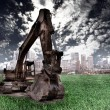 Excavatoron the grass - Stock Photo