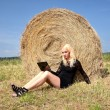 Sexy woman by hay stack on a summer day — Stock Photo