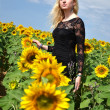 Portrait of young woman with sunflowers — Stock Photo #11512514