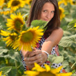 Portrait of young woman with sunflowers - Foto Stock