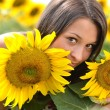 Portrait of young woman with sunflowers - Stockfoto