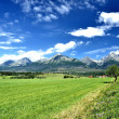 View of mountain peaks in summer time in High Tatras — Stock Photo #11717338