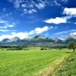 View of mountain peaks in summer time in High Tatras — Stock Photo