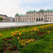 Belvedere palace ViennAustria — Stock Photo #10835984