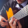Guitarrista — Foto Stock