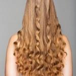 dlouhé vlasy — Stock fotografie