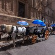 Touristic transport in Malaga — Foto de Stock