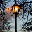 Streetlamp. — Stock Photo
