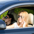 Two women in a luxury car - Stock Photo