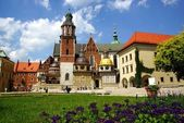 Wawel Cathedral,The Cathedral Basilica of Sts. Stanislaw and Vaclav on the Wawel Hill in Cracow — Stok fotoğraf