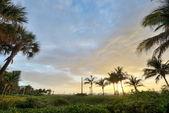 Miami beach, ao nascer do sol — Foto Stock
