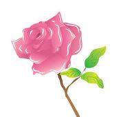 Une tige rose rose sur blanc — Vecteur