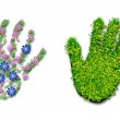 Hand print of grass, flowers and leaves — Stock Photo