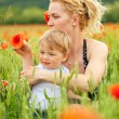 Royalty-Free Stock Photo: Mother and son in poppy field