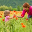 Stock Photo: Mother and daughter in poppy field